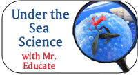 Under the Sea Science With Mr. Educate